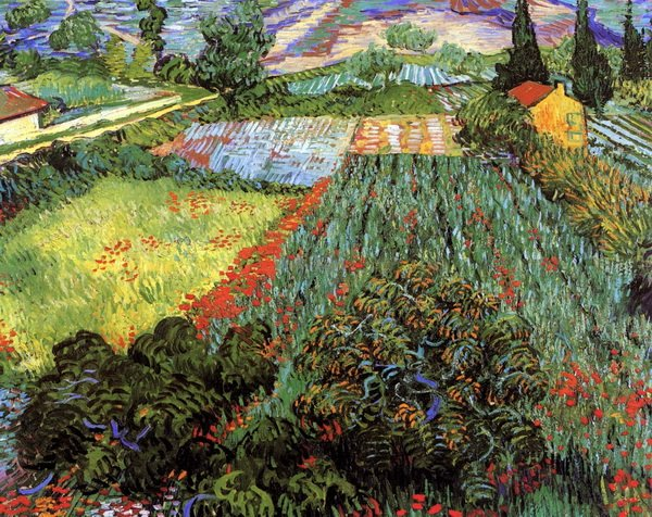Поле с маками  (Field with Poppies)
