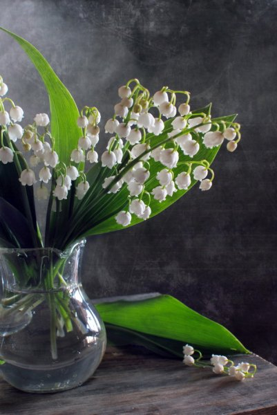 Ландыши (Lily of the valley)