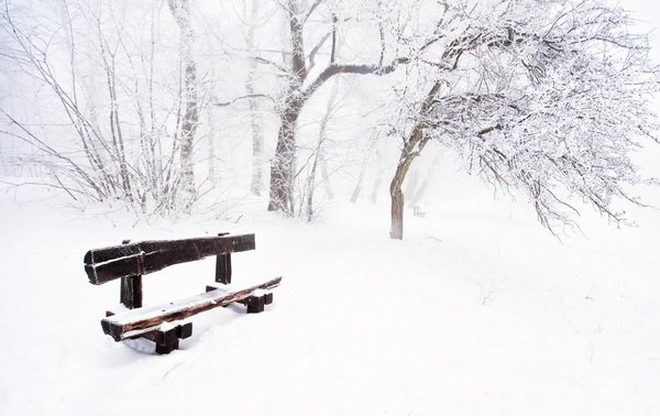 Скамейка в зимнем парке (Bench in winter park)