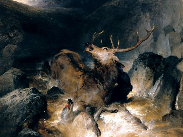 Олень в горах (Deer and Deer Hounds in a Mountain Torrent,)