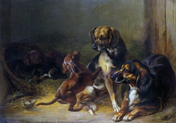 Собаки (Dogs and Whelps)