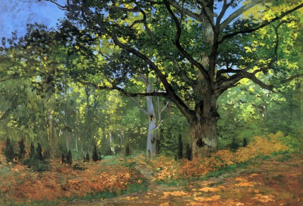 The Bodmer Oak, Fontainbleau Forest