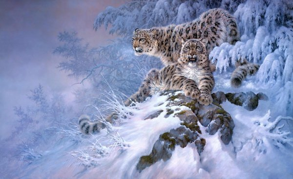 Леопарды (Leopards)