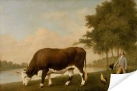 Плакат Бык (1790) (The Lincolnshire Ox)