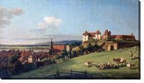 Картина Вид на замок (View of Pirna from the Sonnenstein Castle)